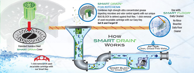 Drain Maintenance Product Smart Drain System For Kitchens